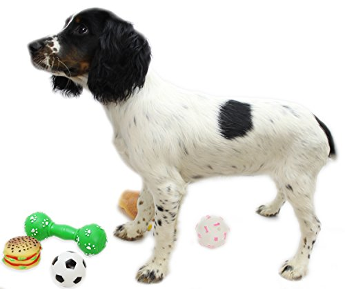 Confezione da 3 Squeezy Squeaky Dog Chew Pet Toys ~ design Vary
