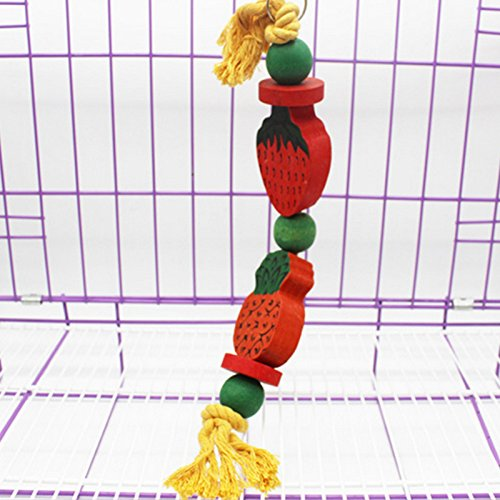 Zhhlaixing Prodotto animale domestico Pet Bird Parrot Chewing Standing Playing Swing Toys Natural & Non-Toxic